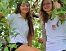 Fotos de alumnos y centros de estudios en el extranjero